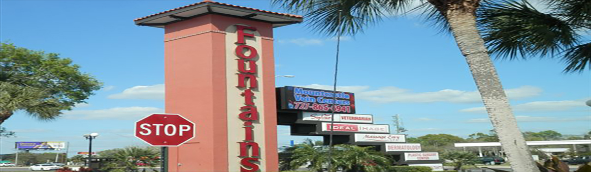 In Saint Petersburg, International Sign is ready to help you with your sign shop needs or requirements. International Sign specializes in the design, manufacture, installation of Monument Message Center Sign Addon in all of Pinellas county, International Sign is ready to serve your business signs fort myers fl needs. Here to serve you International Sign does business in Saint Petersburg in Pinellas county FL. Area codes we service include the  area code and the 